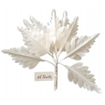 Set of 10 Small White Fabric Fern Leaves ~ Czech Repub.