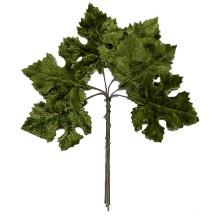Set of 6 Embossed Medium Green Maple Leaves ~ Czech Repub.