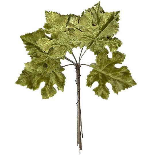 Set of 6 Embossed Light Green Maple Leaves ~ Czech Repub.