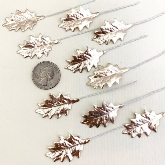 Set of 12 Petite Foil Holly Leaves ~ PALE GOLD