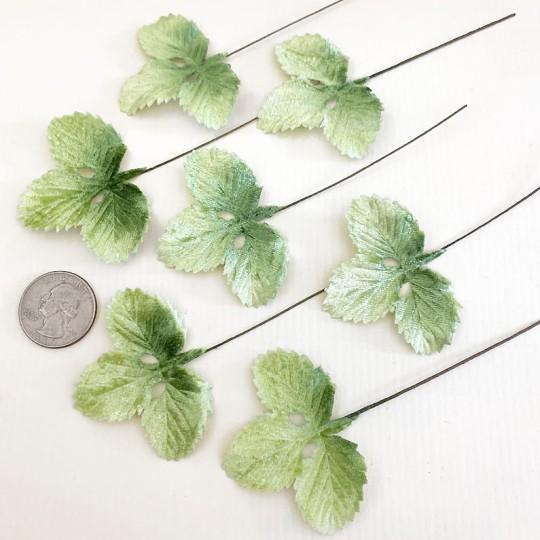 Set of 12 Velvet Strawberry Leaves ~ PALE GREEN SHADED