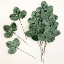 Set of 12 Velvet Strawberry Leaves ~ SAGE GREEN