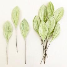 Set of 12 Small Velvet Pear Leaves ~ PALE GREEN