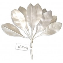 Set of 10 Small White Satin Leaves ~ Czech Repub.