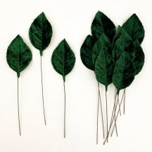 Set of 12 Velvet Rose Leaves ~ DARK GREEN