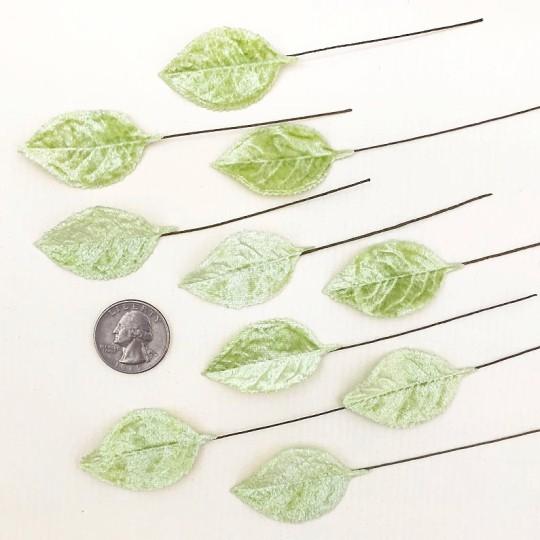 Set of 12 Velvet Rose Leaves ~ PALE GREEN