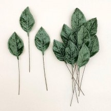 Set of 12 Velvet Rose Leaves ~ SAGE GREEN