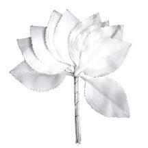 Set of 10 Small White Satin Rose Leaves ~ Czech Repub.