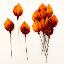 Set of 12 Petite Velvet Rose Leaves ~ AUTUMN OMBRE
