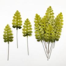 Set of 12 Velvet Fern Leaves ~ GREEN OMBRE
