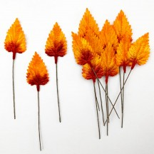 Set of 12 Birch Leaves ~ AUTUMN OMBRE