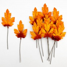 Set of 12 Elongated Maple Leaves ~ AUTUMN OMBRE