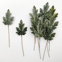 Set of 12 Elongated Maple Leaves ~ SAGE GREEN