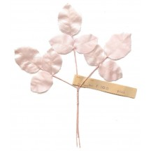 Sprig of Palest Pink Satin Rose Leaves ~ Vintage Germany