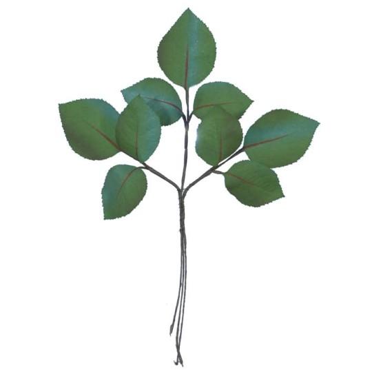 Sprig of Hand Stenciled Green Rose Leaves ~ Vintage Germany