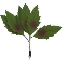 6 Green Shaded Embossed Leaves ~ Vintage Japan