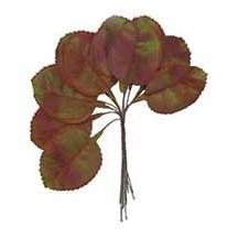 12 Green Shaded Violet Leaves ~ Vintage Germany
