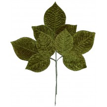 Large Spray of Green Velvet Rose Leaves ~ Vintage Japan