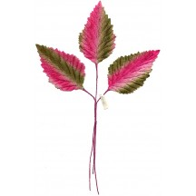 Spray of Pink and Green Shaded Velvet Leaves ~ Vintage Japan