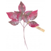Spray of Shimmering Pink Ombre Leaves ~ Vintage Germany
