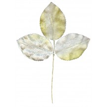 Bundle of Yellow and White Ombre Velvet Leaves ~ Vintage Japan