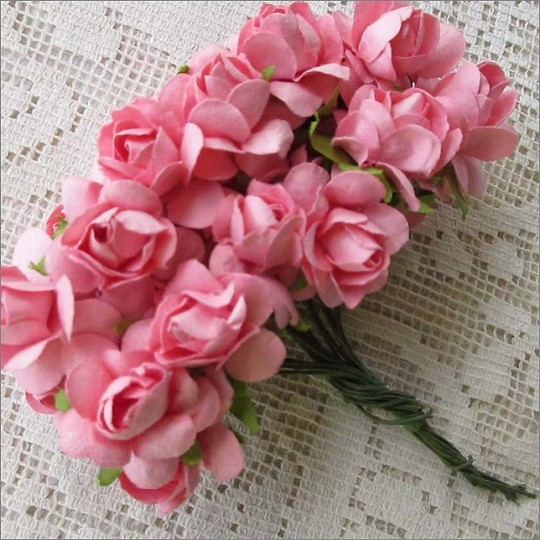 24 Paper Wild Roses in Pink