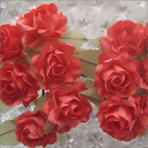 12 Coral Paper Open Rose Flowers
