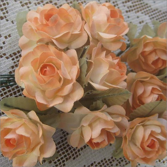 12 Peach Mix Open Rose Paper Flowers