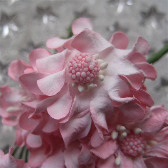 12 Pink Open Daisies Paper Flowers