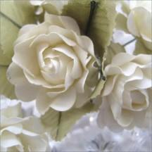 12 Butter Cream Paper Open Rose Flowers