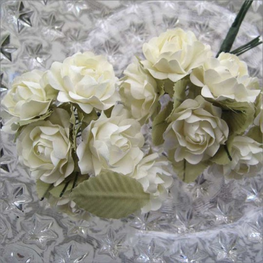 12 Butter Cream Paper Open Rose Flowers