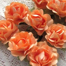 12 Medium Peach Open Rose Paper Flowers