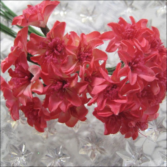20 Fuchsia Mix Paper Small Zinnia Flowers