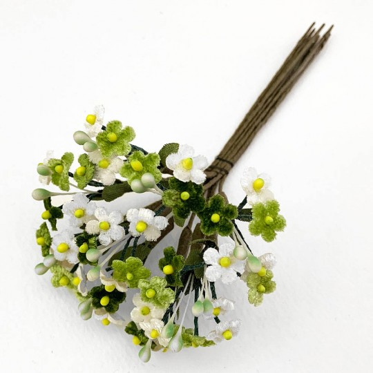 Mixed Bundle of Petite Velvet Forget me Nots ~ Czech Republic ~ GREEN + WHITE MIX