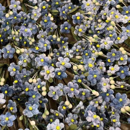 Bundle of Petite Velvet Forget me Nots ~ Czech Republic ~ BLUE