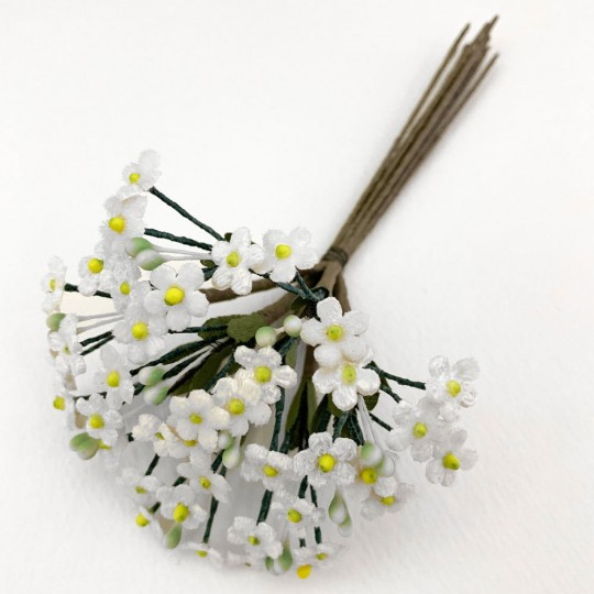 Bundle of Petite Velvet Forget me Nots ~ Czech Republic ~ WHITE
