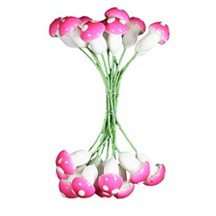 20 Large Compostition Mushroom Stamen from Germany ~ Bright Pink