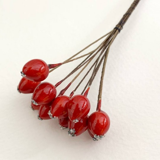 "10 Red Lacquered Rose Hips or Berries ~ 1/2"" ~ Czech Republic"