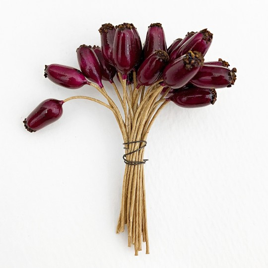 "24 Burgundy Petite Rose Hips ~ 1/2"" ~ Germany"