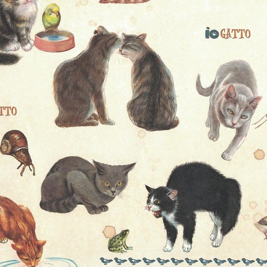 Cats Being Cats Italian Paper