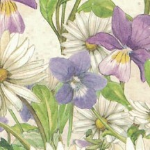 Pansy and Daisy Floral Print Italian Paper