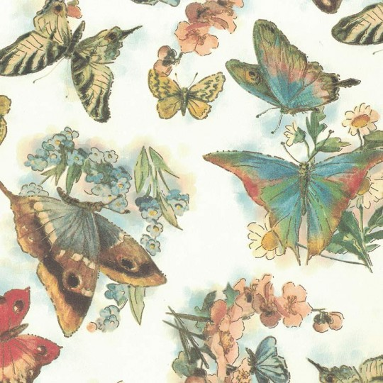 Bold Butterflies and Flowers Italian Print Paper with Gold Highlights ~ Carta Fiorentina Italy