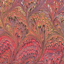 Red Marbeled Feathers Italian Print Paper ~ Carta Fiorentina Italy