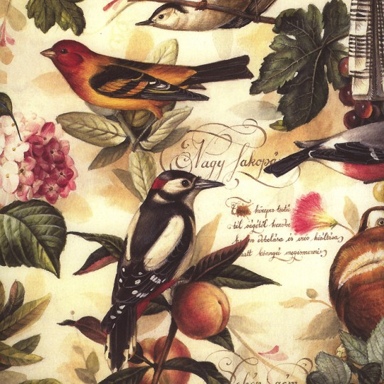 Birds and Fruits Print Paper ~ Bomo Art Budapest Hungary
