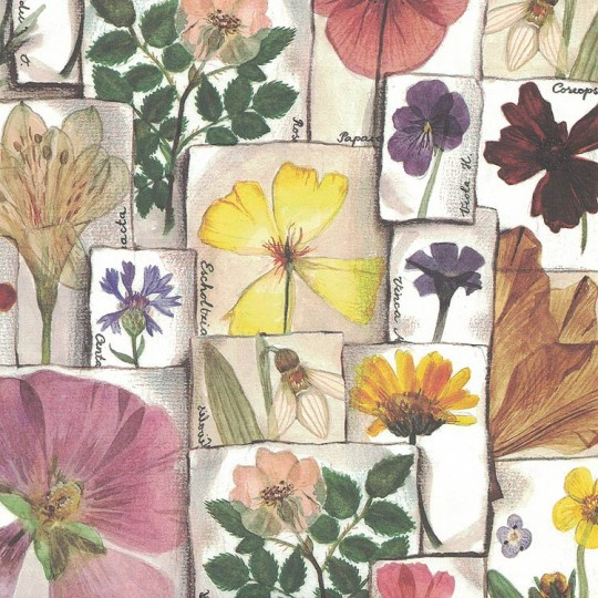 Pressed Flowers Print Paper ~ Bomo Art Budapest Hungary
