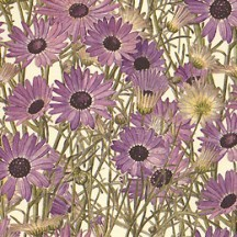 Purple Daisies Floral Print Italian Paper ~ Leonardo Communication