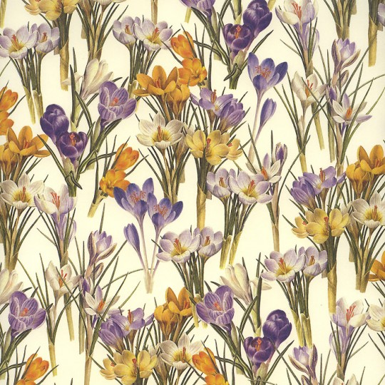 Crocus Flowers Italian Paper ~ Leonardo Communication