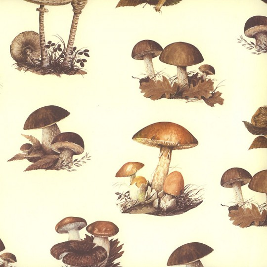Forest Mushrooms Print Italian Paper ~ Leonardo Communication
