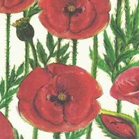 Red Poppies Floral Print Italian Paper ~ Leonardo Communication
