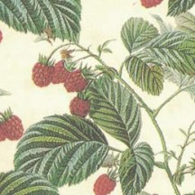 Petite Raspberries Print Italian Paper ~ Leonardo Communication